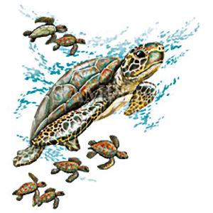 Turtle Max Reptile Gifts Green Sea Turtle Swimming With Babies T