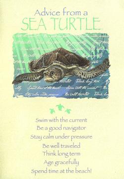 Turtle Max Reptile Gifts Gt Sea Turtle Advice Greeting Card