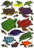 Turtle Window Cling Decals