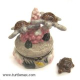 Sea Turtles Swimming Box