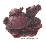 Chinese Turtle Dragon