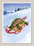 Sledding Turtle Holiday Cards (15)