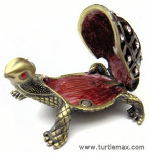 Tortoise Jewel Box