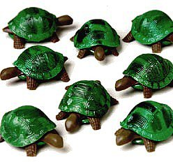 Green Turtle Toys (12)