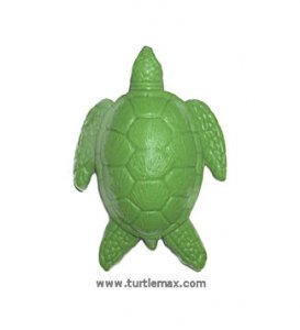 Turtle Max Reptile Gifts