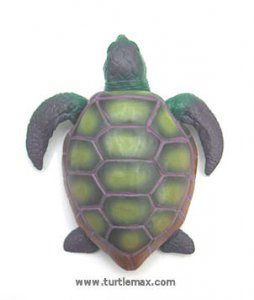 Green & Lavender Stretchy Sea Turtle