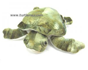 Medium Plush Green Sea Turtle