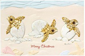 Turtle Hatching Tidings Christmas Cards