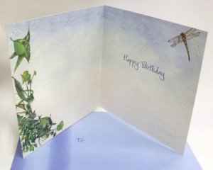 Turtle Dreams Birthday Card